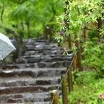 北陸地方の梅雨明けはいつ?2015気象庁とウェザーニュズ見解に過去データ予想