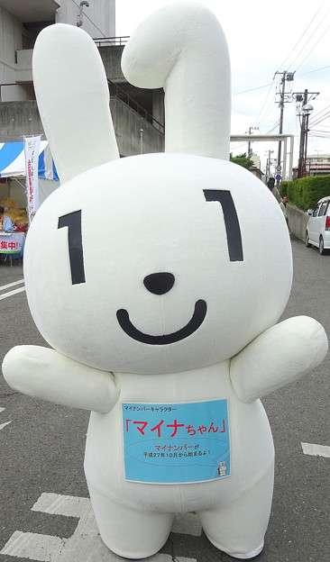 151112_mynamber-seido_mainachan