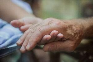 生活保護受給世帯割合と受給人数|高齢者世帯と母子家庭
