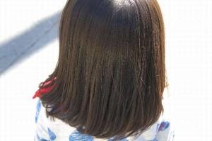 アタマジラミは学校に報告?大人も感染?まつ毛とまゆ毛は?ヘアーキャストって何?